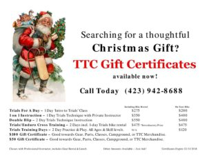 thumbnail of Flyer – Christmas Gift Certificate 2017
