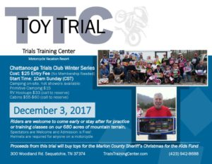 thumbnail of 2017 Toy Trial Flyer